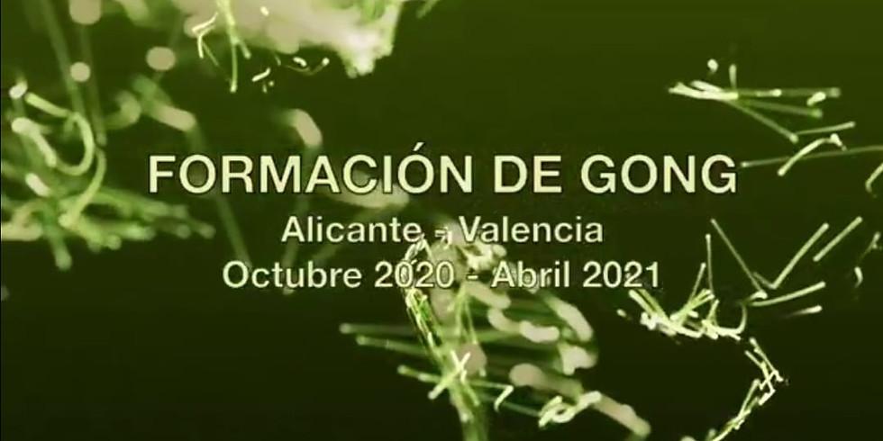 FORMACIÓN DE GONG ALICANTE