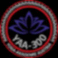 YAA-300_YAA_800px_edited.png