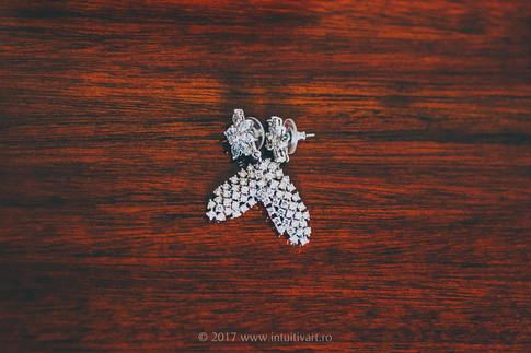038 Wedding Photography_Dana si Mihai.jpg
