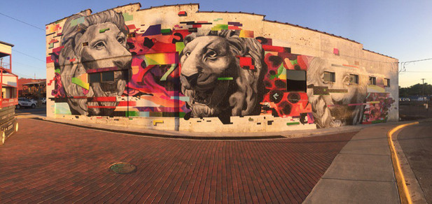 lions downtown.jpg