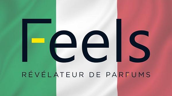Feels Italia.png