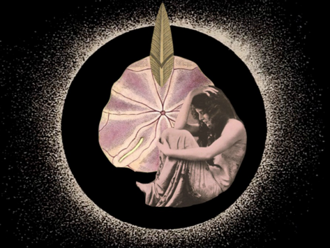 NEW MOON IN PICSES ASTROLOGY READING