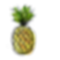 pineapple (3).png