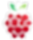 raspberry_PNG5076.png