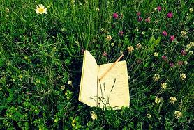 naturewriting.jpg
