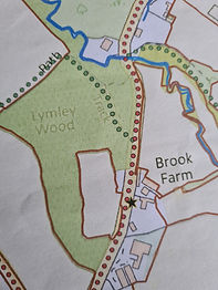 Map LW.jpg