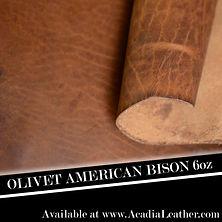 Olivet Bison.JPG