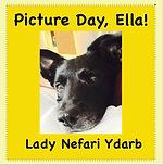 Picture Day Ella Original Front.jpg