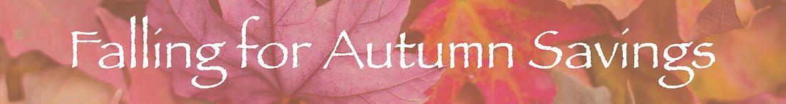 Autumn Savings Website mini banner.png
