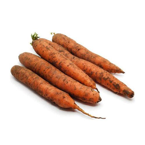 Морковь не мытая (Казахстан)