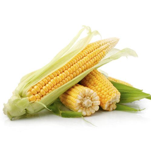 Кукуруза (Казахстан)