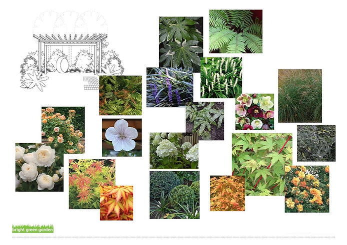 Plants.2.JPG