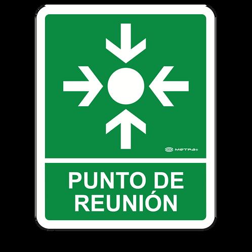 Punto de Reunión (20 x 25 cm.)