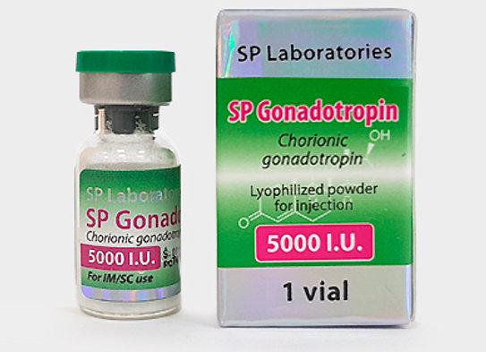 SP GONADOTROPIN 5000
