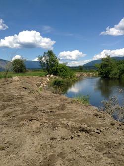 Habitat Restoration