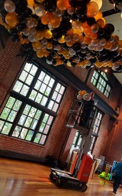 Organic ceiling