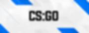 csgo.png