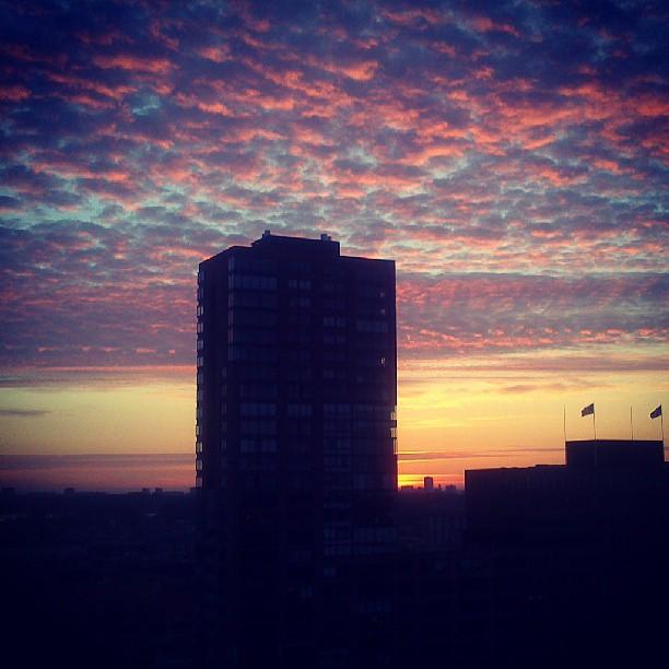 Instagram - Watching sunrise in the westland
