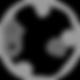 Verma Lab logo circular-02-02.png