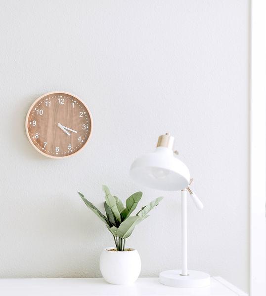 Clock%20and%20Plant_edited.jpg