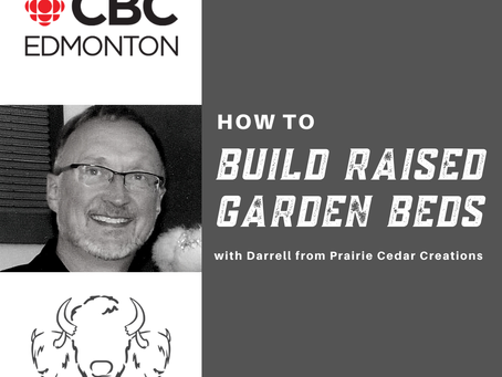 Build Raised Flowerbeds - with Darrell!