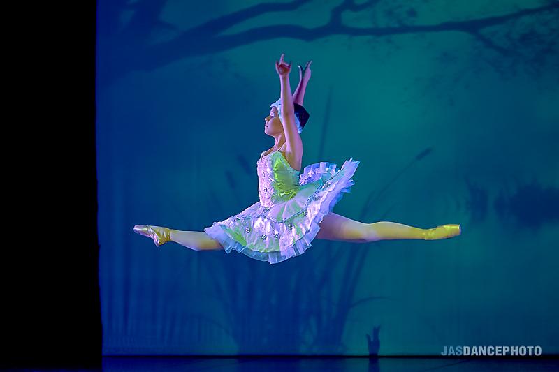 Técnica de Dança Clássica