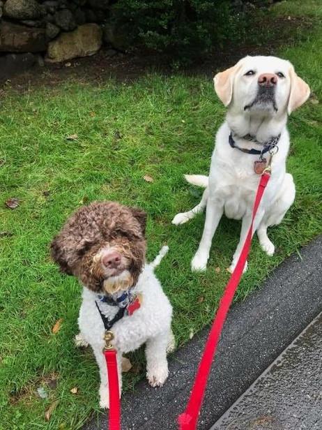 Cookie & Hazel.jpg