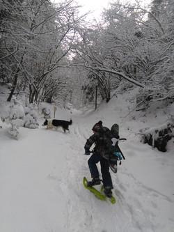 snow hike nearby venice