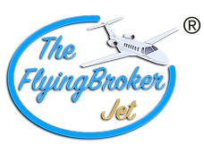 TFB Jet Logo® Very Small.png