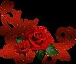 rose png.png