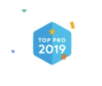 Thumbtack top pro for 2019