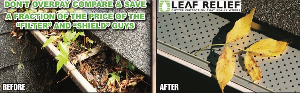 leaf solution and gutter guard before an
