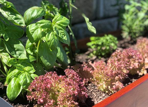 Vegetable & Herb Planter
