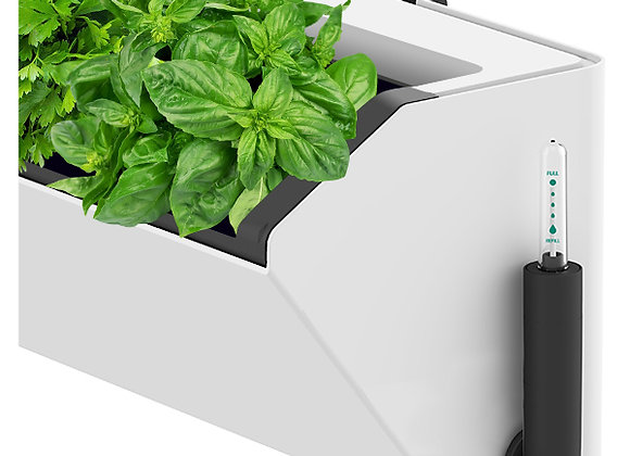 Herb Garden - Self Watering Wall Planter