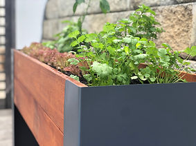 Planter 3.jpg