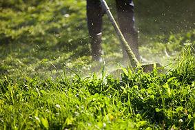 cutting-grass-trimmer_127093-679.jpg