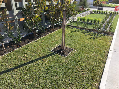 Residential Development Perth