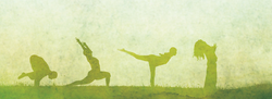 Private and Small Group Yoga