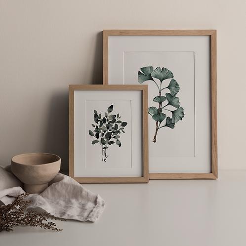 Signed FinArt Print Set: Eucalyptus Bouquet meets Ginko Branch