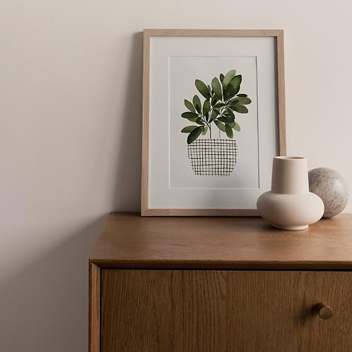 Printset Plantlady