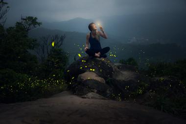 fireflies copy.jpg