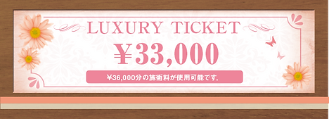 LUXURY TICKET33000.png