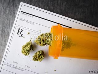 Noticia: ¿Cuales son los efectos reales de la marihuana sobre nuestro organismo?