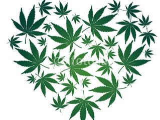 THCV, nuevo miembro en la familia del cannabis medicinal