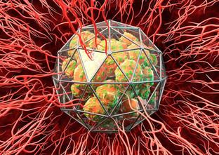 El CBD y la angiogénesis tumoral