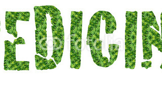 Reafirmando el efecto antitumoral del cannabis