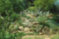kaktuszdomb_delkeletrol_lzn.jpg