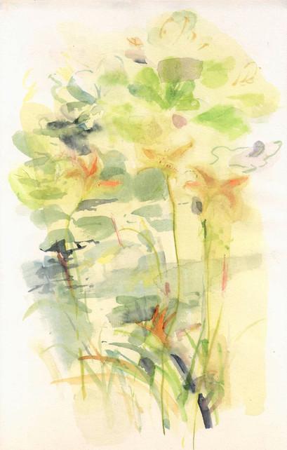 Tageslilien am Ufer, 35x21cm