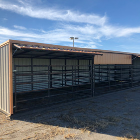 12 x 40 Cattle Shelter with 12 x 13 Pens