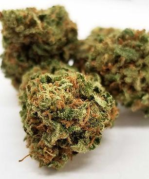 Cannabis-bud.jpg